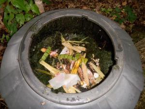 Inside Compost Bin