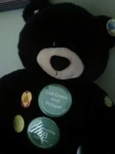 Going Green Teddy Bear