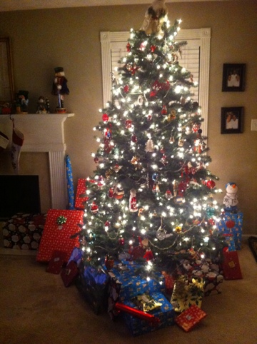 Christmas Tree Bags Disposal
